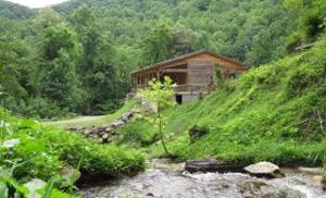 Waynesville Nc Real Estate Mountain Home Properties Hot Springs
